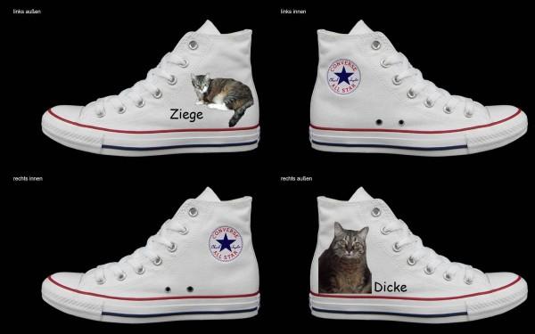 Schuh (Design: 4372 )Converse High