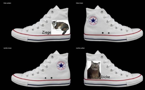 Schuh (Design: 4359 )Converse High