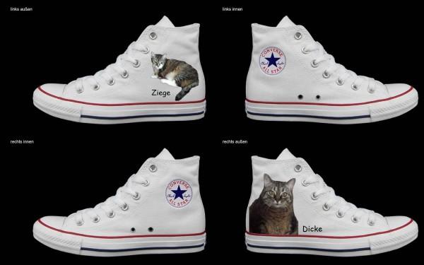 Schuh (Design: 4369 )Converse High