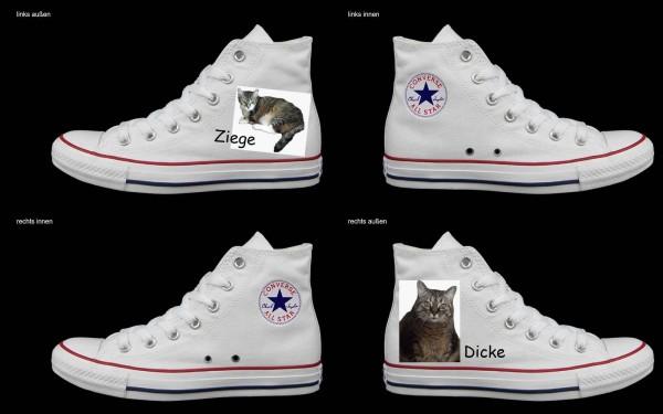 Schuh (Design: 4358 )Converse High