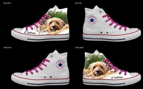 Schuh (Design: 4758 )Converse High